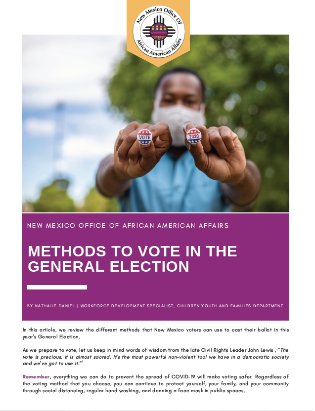 Methods to Vote in the General Election